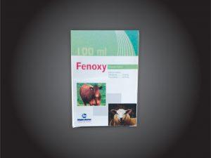 Fenoxy-300x225