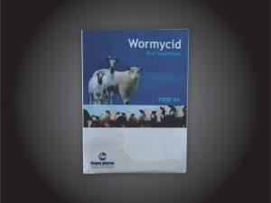 Wormycid-300x225