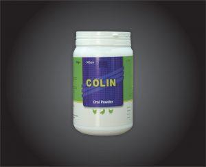 colin-300x244